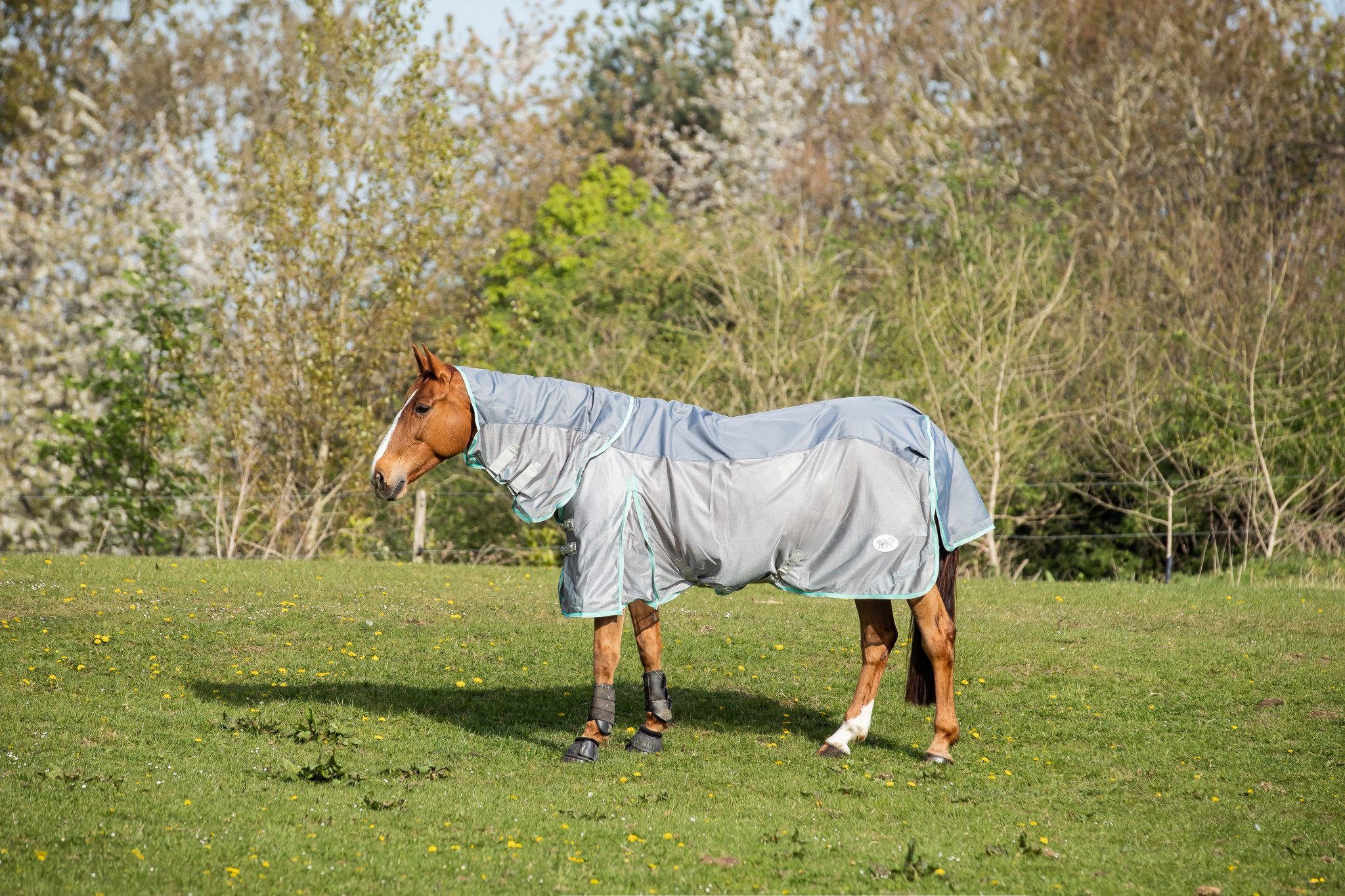 Product Feature – Swish Equestrian Fly Combination Rug